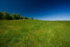 голубое небо зеленого цвета поля Стоковое Изображение