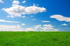 голубое небо зеленого цвета травы вниз Стоковая Фотография RF