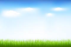 голубое небо зеленого цвета травы Стоковое Изображение RF