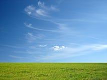 голубое небо зеленого цвета травы Стоковое Изображение