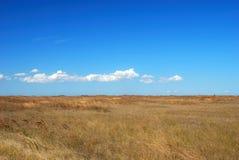 голубое небо злаковика Стоковое Изображение