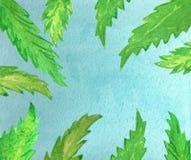 Голубое небо и зеленые листья ладони иллюстрация штока