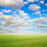 Голубое небо и зеленый лужок стоковые фото