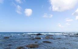 голубое небо ладоней океана ландшафта Стоковые Изображения RF