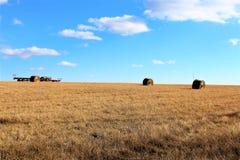 Голубое небо над полем сена Стоковые Изображения