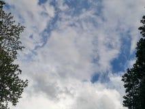 Голубое небо с облаками и деревья окружают стоковые изображения rf