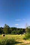 голубое небо hayfield вниз стоковые фотографии rf