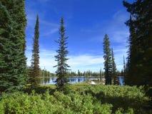 Голубое озеро в горах Айдахо стоковые изображения rf