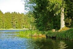 голубое озеро engure Стоковое Изображение RF