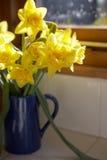 голубое окно вазы силла кувшина daffodils Стоковая Фотография