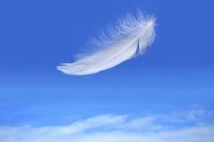 голубое падая небо пера Стоковая Фотография