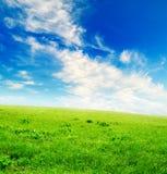 голубое пасмурное небо зеленого цвета травы поля Стоковые Изображения