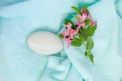 голубое полотенце мыла Стоковая Фотография
