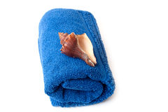 голубое полотенце seashell Стоковые Фотографии RF