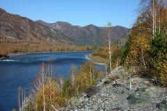 голубое река Стоковые Изображения