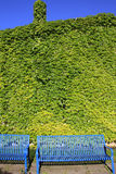 голубое экологическое небо зеленой дома Стоковые Изображения