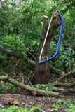 Голубое bucksaw с желтой ручкой Стоковая Фотография