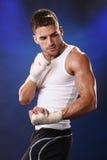 голубой боксер стоковые фотографии rf