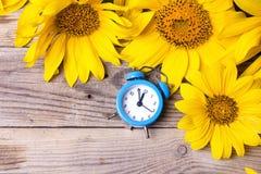 Голубой будильник и желтые солнцецветы на старой деревянной предпосылке Стоковые Изображения RF