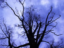 голубой вал мрачного дня вниз Стоковое Фото