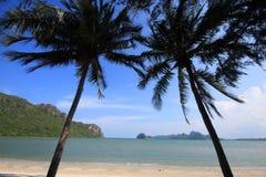 голубой вал 2 неба кокоса стоковые фотографии rf