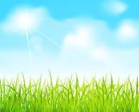 голубой вектор неба зеленого цвета травы иллюстрация штока
