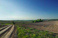 голубой взгляд неба поля сельской местности Стоковое Изображение
