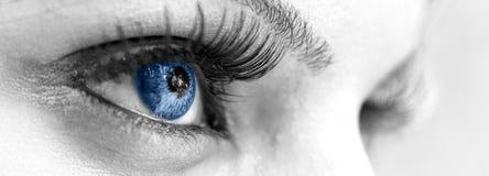 Голубой глаз - красивейший, женственно стоковое фото rf