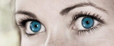 Голубой глаз - красивейший, женственно стоковые фотографии rf