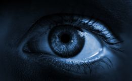 Голубой глаз радужки Съемка макроса стоковая фотография rf