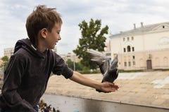 Голубой голубь сидел на руке ` мальчика протягиванной s в nea города стоковое изображение rf