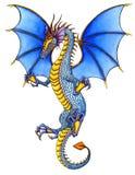 голубой дракон Стоковая Фотография