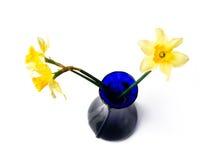 голубой желтый цвет вазы narcissi Стоковая Фотография RF