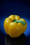 голубой желтый цвет перца Стоковое Изображение