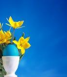 голубой желтый цвет тюльпанов пасхального яйца Стоковые Изображения RF