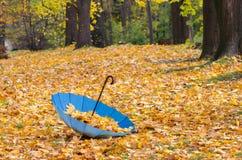 Голубой зонтик с листьями осени Стоковые Фото
