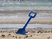 голубой лопаткоулавливатель моря песка стоковое изображение rf