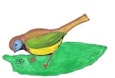 голубой нарисованный titmouse Стоковые Фотографии RF