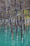 Голубой пруд Стоковое фото RF