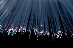 голубой пурпур волокна Стоковые Фотографии RF