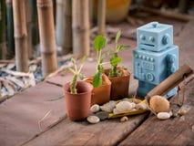 Голубой ретро робот забавляется с садовыми инструментами и деревянной картиной o пола Стоковые Фото