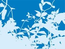 голубой рост Бесплатная Иллюстрация