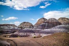 Голубой след мезы в окаменелом национальном парке леса, Аризоне стоковые изображения rf
