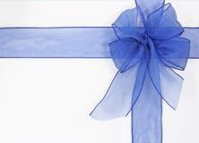 голубой смычок Стоковые Изображения