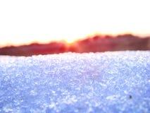 Голубой снег сверкнает в розовых лучах Стоковая Фотография RF