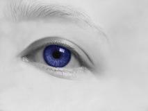 голубой темный глаз Стоковые Фото