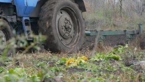 Голубой трактор вспахивает черную почву в глубокой осени Подготовка земли зимы видеоматериал
