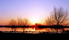 голубой холодный заход солнца Стоковые Фотографии RF