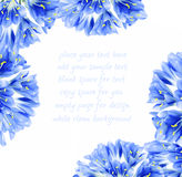 голубой цветок граници Стоковая Фотография