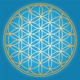 Голубой цветок жизни Стоковые Изображения